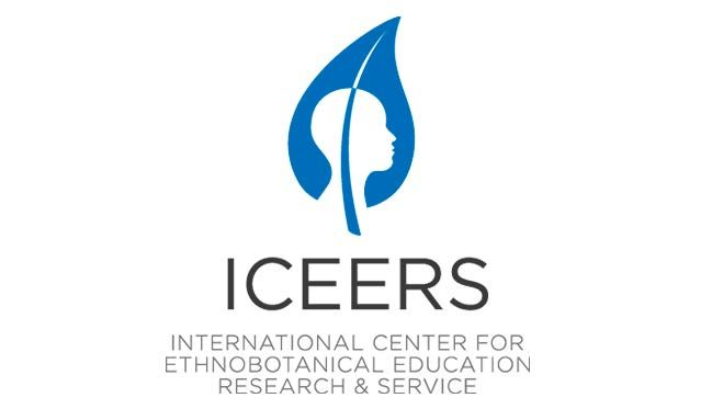 ICEERS: From the border to the trench, paths to regulation