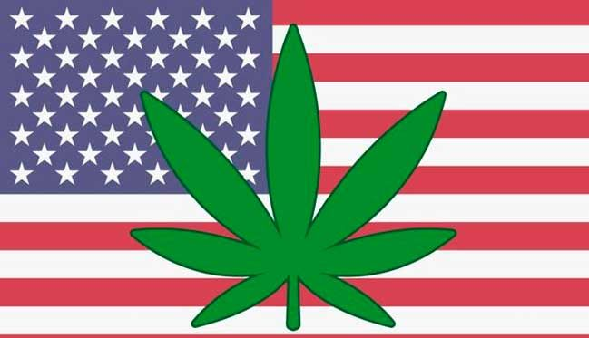 Cannabis in the United States: Dream or American nightmare?